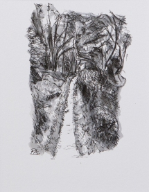 Pathway 3 (ink on paper)