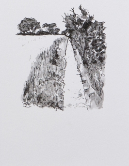 Pathway 6 (ink on paper)