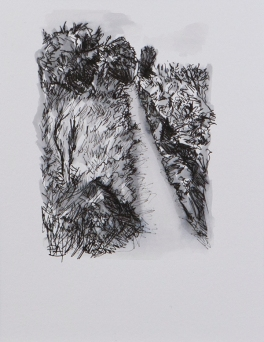 Pathway 7 (ink on paper)