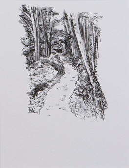 Pathway 8 (ink on paper)