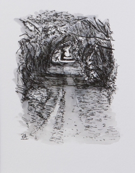 Pathway 9 (ink on paper)