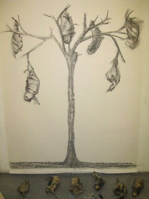 Study for Tree of Souls (charcoal on paper)
